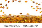 colorful autumn leaves on white ... | Shutterstock . vector #505363072