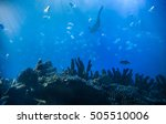 underwater scene with light... | Shutterstock . vector #505510006