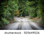 Empty Dirt Road Which Splits I...