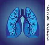 human lungs   Shutterstock .eps vector #505651282