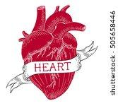 human heart engraving...   Shutterstock .eps vector #505658446