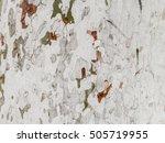 macro of a tree crust | Shutterstock . vector #505719955