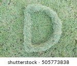 grass letter d isolated on...