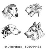portraits of the different dogs   Shutterstock . vector #506044486