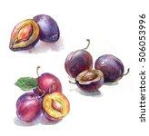 hand drawn watercolor ... | Shutterstock . vector #506053996