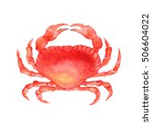 watercolor colorful crab. hand... | Shutterstock . vector #506604022