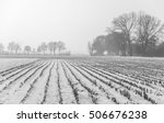 Monochrome Image Of Snow...