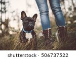 Adorable French Bulldog Puppy...