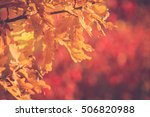 autumn tree | Shutterstock . vector #506820988