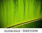 texture background of backlight ... | Shutterstock . vector #506915398