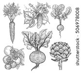 vegetables set. cucumber ... | Shutterstock .eps vector #506978008