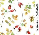 bright autumn seamless pattern...   Shutterstock . vector #507047428