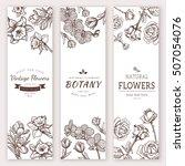 flower vintage styled sketch... | Shutterstock .eps vector #507054076