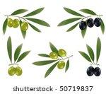 photo realistic vector...   Shutterstock .eps vector #50719837