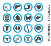 human organs and parts icon set ... | Shutterstock .eps vector #507226072