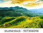 Rice Fields On Terraced Of Mu...