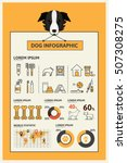 Stock vector droids infographic infographics on the dog care dog training the statistics given charts and 507308275