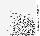 vector background of a birds'... | Shutterstock .eps vector #50742262