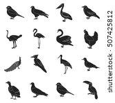 bird set icons in black style.... | Shutterstock .eps vector #507425812