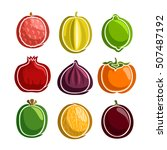 vector set colorful fruits... | Shutterstock .eps vector #507487192