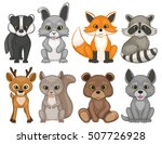 cute forest animals isolated on ... | Shutterstock .eps vector #507726928