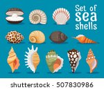 sea shells isolated on blue... | Shutterstock .eps vector #507830986
