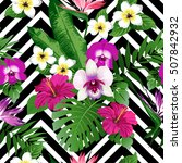 tropical exotic flowers and... | Shutterstock .eps vector #507842932