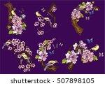 hand drawn vector set birds and ... | Shutterstock .eps vector #507898105