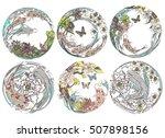 vector set koi  birds ... | Shutterstock .eps vector #507898156
