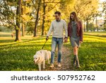 Stock photo couple holding hands while walking a dog in the park 507952762