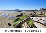 Coastline At Tofino With Large...