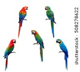 beautiful macaw parrot birds... | Shutterstock . vector #508278622