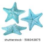 Set Of Light Blue Starfishes...