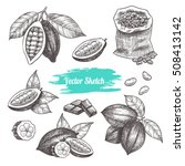 vector cocoa hand drawn sketch .... | Shutterstock .eps vector #508413142