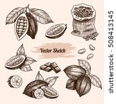 vector cocoa hand drawn sketch .... | Shutterstock .eps vector #508413145