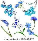 Blue Colorful  Beautiful...