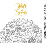 vector background with nuts and ... | Shutterstock .eps vector #508516546