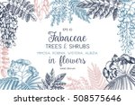 vintage trees and shrubs in... | Shutterstock .eps vector #508575646