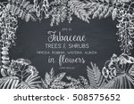 vintage trees and shrubs in... | Shutterstock .eps vector #508575652