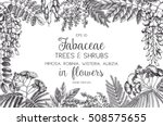 vintage trees and shrubs in... | Shutterstock .eps vector #508575655