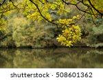 Mallards Pike Lake. In The...