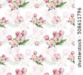 apple blossom. watercolor.... | Shutterstock . vector #508611796