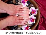 manicured hands and pedicured... | Shutterstock . vector #50887780