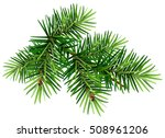 green christmas pine tree... | Shutterstock . vector #508961206