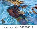 closeup frozen brook under an... | Shutterstock . vector #508990012