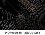 spider web isolated on black... | Shutterstock . vector #509034355