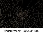 spider web isolated on black... | Shutterstock . vector #509034388
