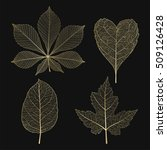 Set Colored Gold Leaves. Vector ...