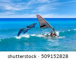 windsurfing and dolphin | Shutterstock . vector #509152828