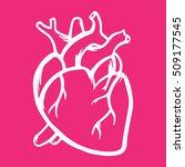 heart vector icon hand drawn... | Shutterstock .eps vector #509177545